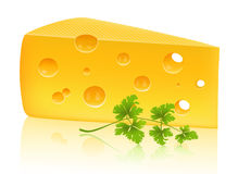Cheese and parsley Stock Photos