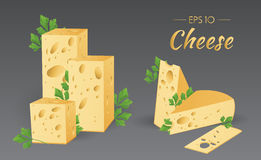Cheese with parsley. Vector illustration. Cheese with parsley. Milk product. Set of different pieces of cheese. Food collection Royalty Free Stock Photo