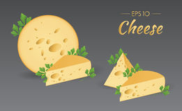 Cheese with parsley. Vector illustration. Cheese with parsley. Milk product. Set of different pieces of cheese. Food collection Royalty Free Stock Photography