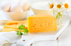 Cheese with parsley Stock Image