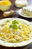Cheese pasta Royalty Free Stock Photography