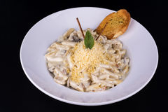 Cheese pasta with white sauce stock images