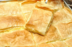 Cheese pie Stock Photography