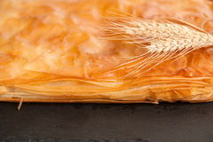 Cheese pie - close up Stock Image