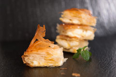 Cheese pie - close up Stock Photography