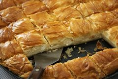 Cheese pie close up. Traditional greek Cheese pie on pan cut in pieces Stock Images