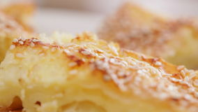 Cheese pie with sesame seed stock video