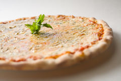 Cheese pizza. And arugula, white background, detail royalty free stock photography