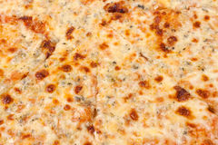Cheese pizza background Royalty Free Stock Image