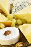 Cheese plate. With different kinds of delicacy cheeses Royalty Free Stock Images