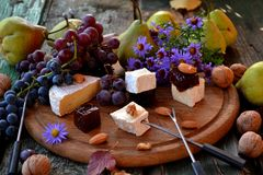 Cheese plate with autumn fruits Royalty Free Stock Photos