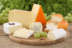 Cheese plate with Camembert, mountain and Swiss cheese Royalty Free Stock Images