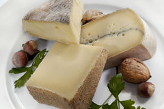 Cheese on a plate Royalty Free Stock Photos