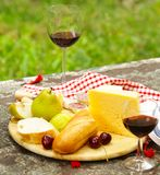 Cheese plate with fruits and wine Royalty Free Stock Photos