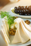 Cheese plate with nuts and herbs. Royalty Free Stock Photo