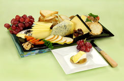 Cheese Platter. Delicious cheese platter with various cheeses and fruits ready to serve Stock Image