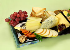 Cheese Platter. Delicious cheese platter with various cheeses and fruits ready to serve Stock Photos