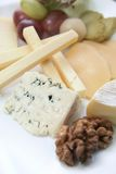 Cheese platter. Variaty of cheese on plate Royalty Free Stock Images