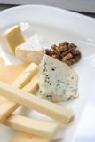 Cheese platter. Variaty of cheese on plate Stock Images