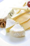 Cheese platter. Variaty of cheese on plate Royalty Free Stock Image