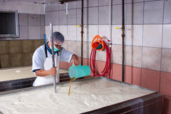 Cheese production in factory royalty free stock photos