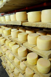 Cheese production Royalty Free Stock Image
