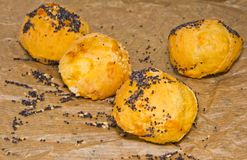 Cheese profiteroles sprinkled with poppy seeds Royalty Free Stock Images