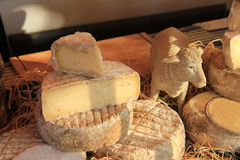 Cheese at a Provencal market Royalty Free Stock Images