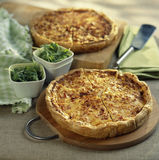 Cheese quiche Royalty Free Stock Images