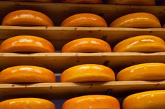 Cheese rack in refining . Stock Image