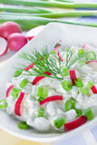 Cheese with radish Royalty Free Stock Photography