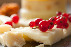 Cheese And Redcurrant Royalty Free Stock Photo