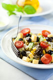 Cheese and rice salad with olives royalty free stock photo