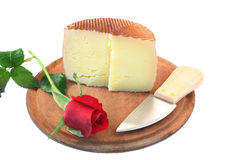 Cheese and rose. Snack with love Royalty Free Stock Images