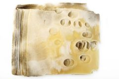Cheese rot. On a white background Stock Photo