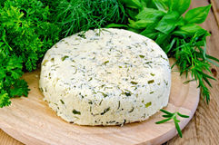 Cheese round homemade with spices Stock Image