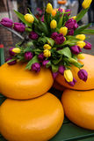 Cheese rounds decorated with tulips on street in Amsterdam, Netherlands. Royalty Free Stock Photography