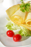 Cheese with salad Stock Photography