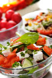 Cheese salad with fresh vegetables Royalty Free Stock Photography