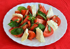 Cheese salad with tomato and green basil Stock Image