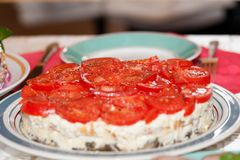Cheese salad with tomatoes served on a large round dish royalty free stock photos