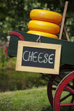 Cheese for sale Royalty Free Stock Photo
