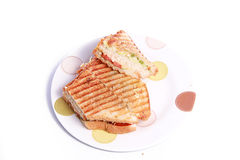 Cheese sandwich Royalty Free Stock Image