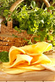 Cheese sandwich. Very tasty and healthy cheese sandwich royalty free stock images