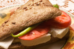 Cheese sandwich Stock Image