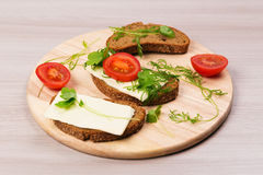 Cheese sandwich with parsley and dill tomato. Stock Image