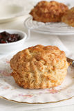 Cheese Scones Royalty Free Stock Photos