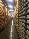 Cheese seasoning caves. Royalty Free Stock Photos