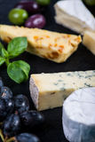 Cheese selection on black slate with fresh herbs Stock Image