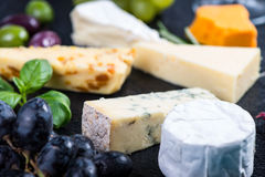 Cheese selection on black slate with fresh herbs Royalty Free Stock Images